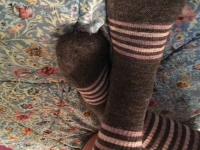 Old Socks with Holes