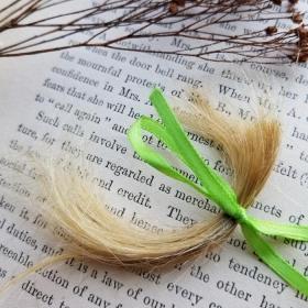 Lock of Blonde Hair